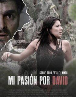 """Notes a """"Mi pasión por David"""" (Cinemes Girona)"""
